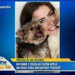 .@RayanneMorais_ e @oDouglasSampaio fazem apelo para encontrar cãozinho Pocker 😣 #HojeEmDia https://t.co/CkCPFQThBH