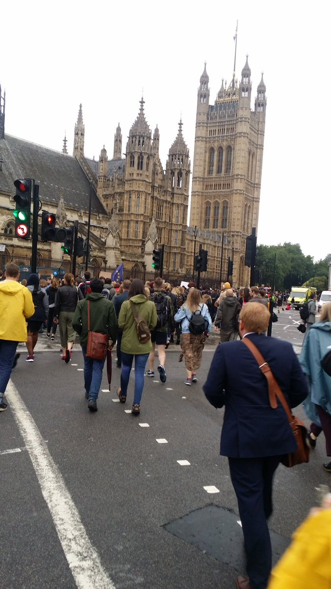 The people of #London March on Parliament for #EU Key message: get MPS to VOTE IT DOWN #Euref #Remain #IndyRef https://t.co/6oSYNZ8bum
