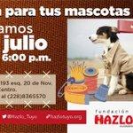 """Segundo curso gratuito de @Hazlo_Tuyo """"Haz ropa para tus mascotas"""" iniciamos el sábado 9 de julio. #Xalapa https://t.co/W4EKMWVXTe"""