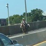 Man rides horse across New York-area bridge https://t.co/TqJeQ9v6mF https://t.co/TK5loHJRgH