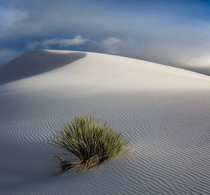 White Sands | Photography by ©Cecil Whitt https://t.co/y53GG88xL4