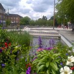 Watford Pond looking very floral. Thank you Watford BID! https://t.co/t8FoxhShrA