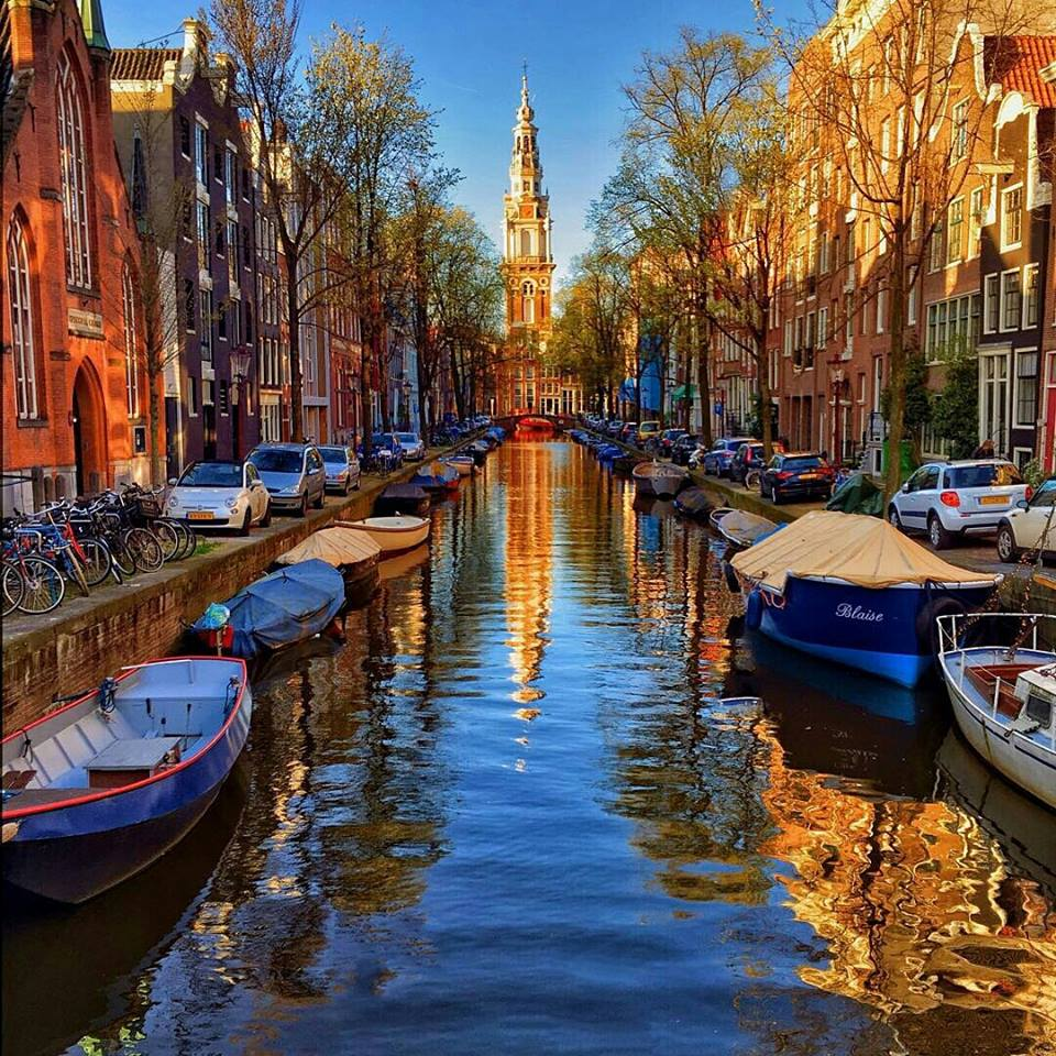 #Amsterdam | Photography By ©Claudio Bezerra https://t.co/lEo9sZpSB8