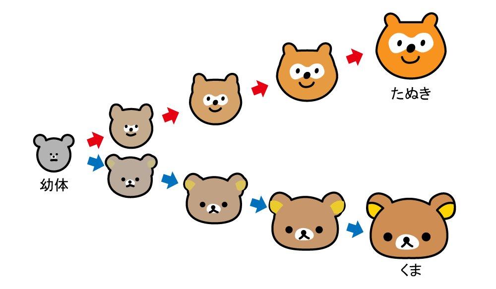 熊とタヌキの幼体が似ているというので図にしました https://t.co/kcjFyhKgfz