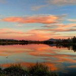 No matter the season, we love the sunsets in Canberra Region. This beautiful scene was captured by iger @jade_skye_ https://t.co/Q4rQzpCj3p