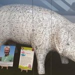 Visit @IpswichBuildSoc @Shop_Sailmakers, my friends are looking after the lovely Bridget #junior pig #pigsgonewild https://t.co/rYhNqdQc5O