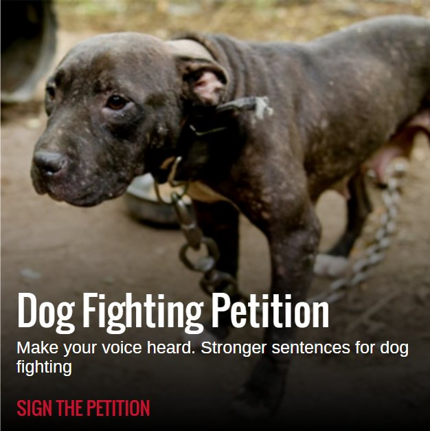 Support stronger sentences for dog fighting? Sign the petition >> https://t.co/kDhkYzBHP2 #EndDogFighting https://t.co/j4dkXsskmM