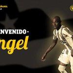 Bienvenido Ángel Rodríguez! Te recibe el Campeón del Siglo #Peñarol https://t.co/yu4YLafngP