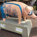 Loving the positive feedback we are getting on our sponsored Pig @swinion @PigsGoneWild16 #givingback #socialvalues https://t.co/cStICu2cp9