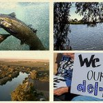 Well represent all Bay-Delta uses. Help us ramp up the #DeltaTunnels fight this year: https://t.co/nPYhs3xKnX https://t.co/QqqZ05qcIo