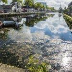 Onderwaterjungle Piushaven: 'Dit is heel slechte reclame voor Tilburg'. #waterpest  https://t.co/sH7evxkSEG https://t.co/PJNJ56KmqH