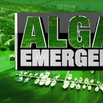 Gov. Scott declares #StateOfEmergency for St. Lucie & Martin due to recent algae blooms https://t.co/XABonuXhgm https://t.co/IQ5ZhFmmsH