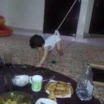 أفضل طريقة لإبعاد الأطفال عن سفرة فطور #رمضان ???????? #دعابة #غرد_بصورة #صور_طريفة #طرائف https://t.co/uP5cFziRTI