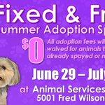 Adopt a shelter pet for free! https://t.co/otHuj5zqPJ
