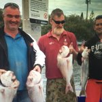 The snapper are on big time. Find out where tonight @9NewsGoldCoast https://t.co/IA1ty1syzG