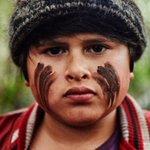 Kiwi film scores top marks on Rotten Tomatoes