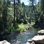 #summervacation #LowerFalls McCloud, #CA #waterfall @NikonUSA #NikonD5500 #NikonLove #MotherNature #water https://t.co/iDpY0gpUwO