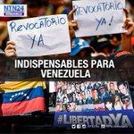 Almagro dice que referendo y liberación de presos políticos son indispensables en Venezuela https://t.co/ZYv9GMraR3 https://t.co/aY9R86brZg