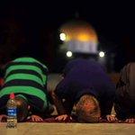 #صور من صلاة التراويح في المسجد الأقصى #رمضان_فلسطين #رمضان_كريم https://t.co/ObLQcdOhKQ