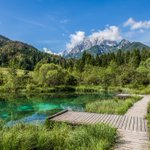 ZELENCI, #Slovenia - the unspoiled natural beauty of the #Zelenci nature reserve is phenomenal! (p: Sabina Tomazic) https://t.co/9E5KcvOAqA