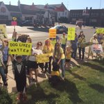 Dozens march for Misty. Her former owner who police say beat and left her for dead has a preliminary hearing today. https://t.co/fMjrXeVQDB