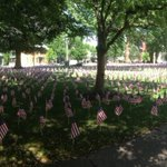 Just under 4,000 American flags now on display in lawn of #Lititz #Moravian Church. Wow! ???????? https://t.co/xJGbnG1BHL