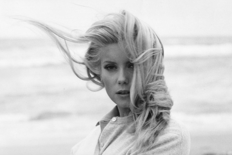 """You can express a lot of things, a lot of action without speaking.""  Catherine Deneuve. https://t.co/uM7kKjYZsg"