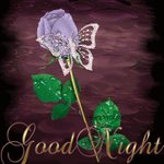 @Gurmeetramrahim #MSGforHumanity papa jee gud night and thanku so much for giving me 1 more beautiful day Luv u paa???? https://t.co/JJQz3RFRev