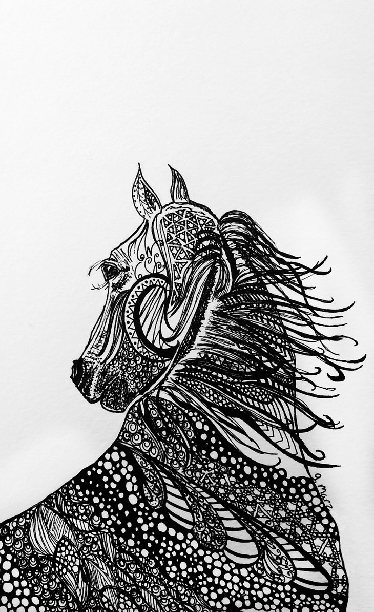 RT @hitRECord: 'gmarz' created this horse illustration using only pen & ink — https://t.co/tcQrNRrzFn. Bravo! https://t.co/X8XUXvvQSP