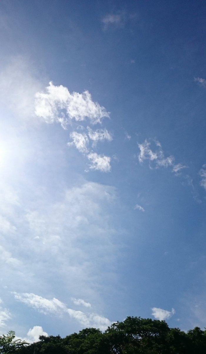 お日様  おはよー☀️  青空が気持ちいい