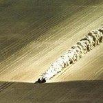اكبر سرعة وصل لها البشر على اليابسة هي1228كلم/س بمركبة ThrustSSC بمحركات رولز رويس في محافظة معان بالأردن عام 1996 https://t.co/B9lpSa3qr8