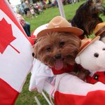 Check out the numerous ways to celebrate Canada this holiday weekend @AdamJBowie https://t.co/vZTdIq3erC https://t.co/GzfQneZlu1