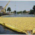 Duckrace: 18000 plastic eendjes op 1 juli 1995 in het Spaarne. #FotoburoDeBoer #Zomertentoonstelling nog 9 dagen! https://t.co/Al0CvXn7Zm