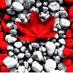 Hope all my Canadian friends have a rockin Canada Day today! #SPNFamily #Supernatural #vancity #Vancouver #jimions https://t.co/qxnx0THoLL