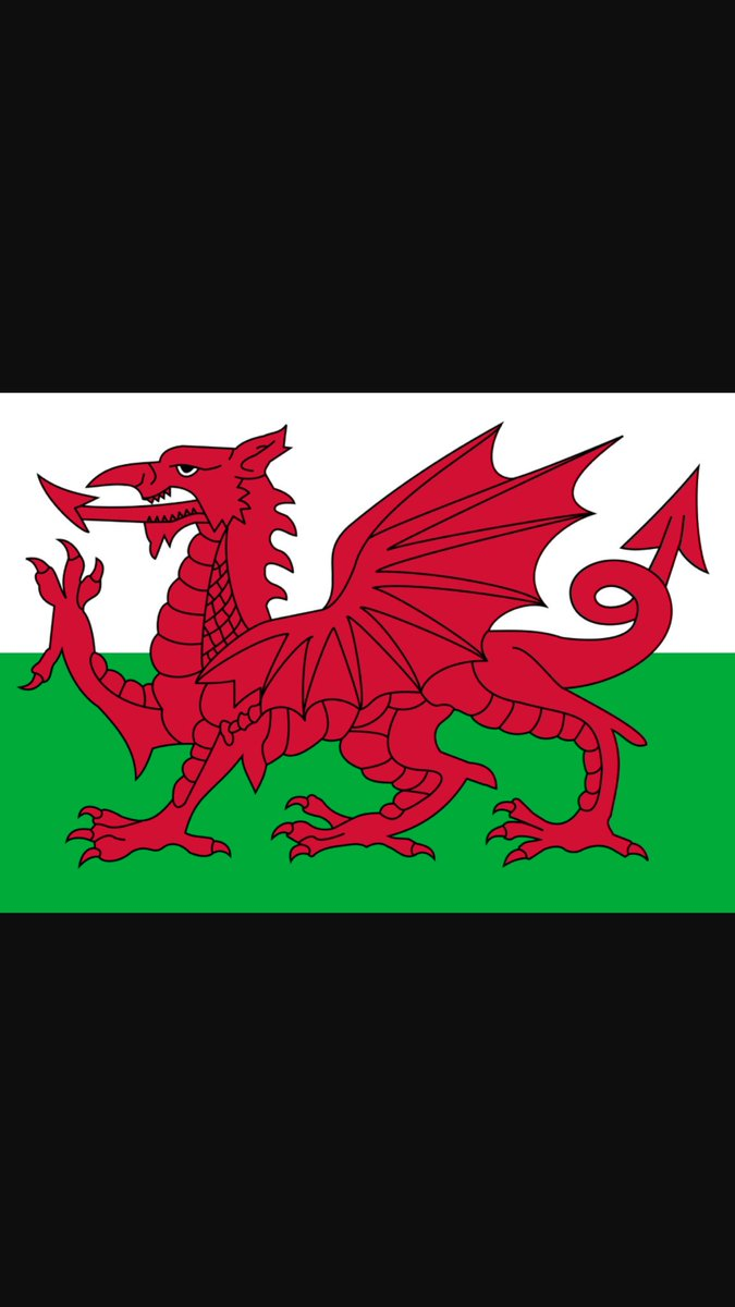 Do I need to say anything else!! See you in Lyon Boys! #WelshandProud #Wales #CymruAmByth #football #teamwork https://t.co/jBHCJxw0Hd