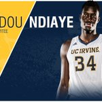 Its official. Congrats on joining the @warriors for Summer League, @mamadoundiaye14! #TogetherWeZot #UCIPride https://t.co/0hX9Xt2l6F