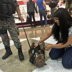 Este día los #campuseros convivieron con Canela y Foxter de la Unidad Canina Especializada de la #FGE. #CPMX7 https://t.co/JyBdgjjdmo