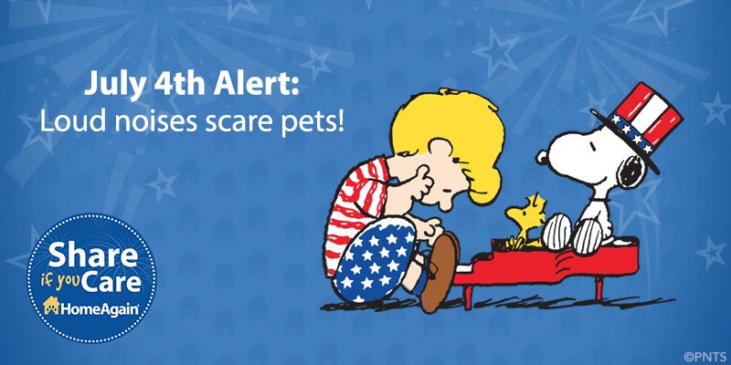 Fireworks frighten pets! Help drown out loud noises by turning on some soothing tunes. #July4th #PetSafety https://t.co/hR5jlq2ZwG