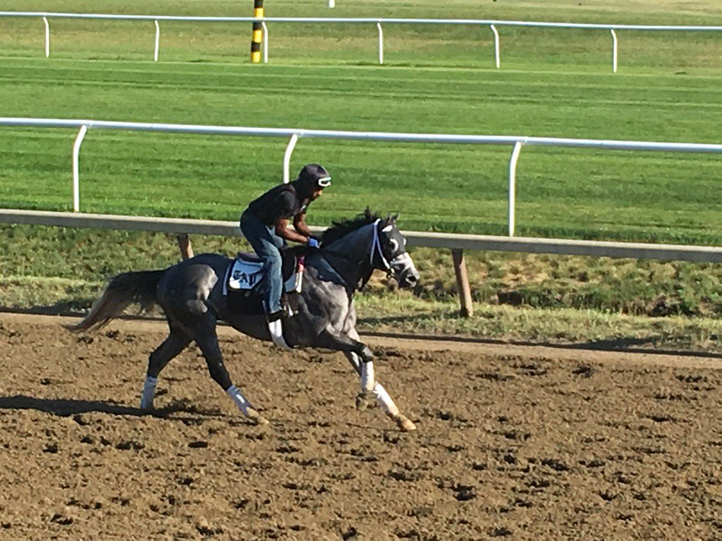 Nick Bush on Destin this morning at @TheNYRA Saratoga https://t.co/vdE2dwkigG