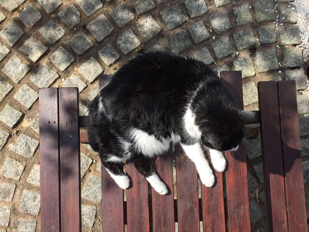 Hope you all have a gr. time at #mogyog tonight chums! Here's some I prepared earlier No.2 #balance  *wobbles* https://t.co/8134k4mtmz