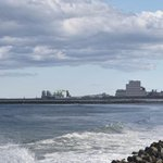 Pacific Ocean headed for normal radiation levels five years on from Fukushima