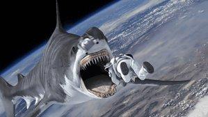 """宇宙でサメとバトル! テレ東「午後のロードショー」7月""""サメ映画祭り""""地上波初など4作 https://t.co/Dec4TeXFAQ https://t.co/muaUo0bmZa"""