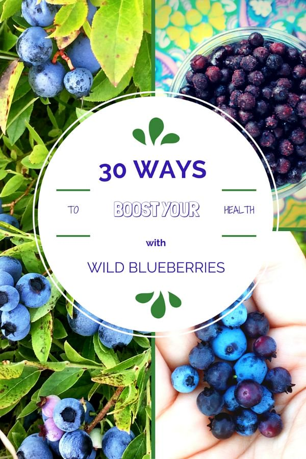 30 {Delicious} Ways to Boost Your Health with Wild Blueberries! https://t.co/pzjL6r9wZu #sponsored @WildBBerries https://t.co/cMN6CqP7W7