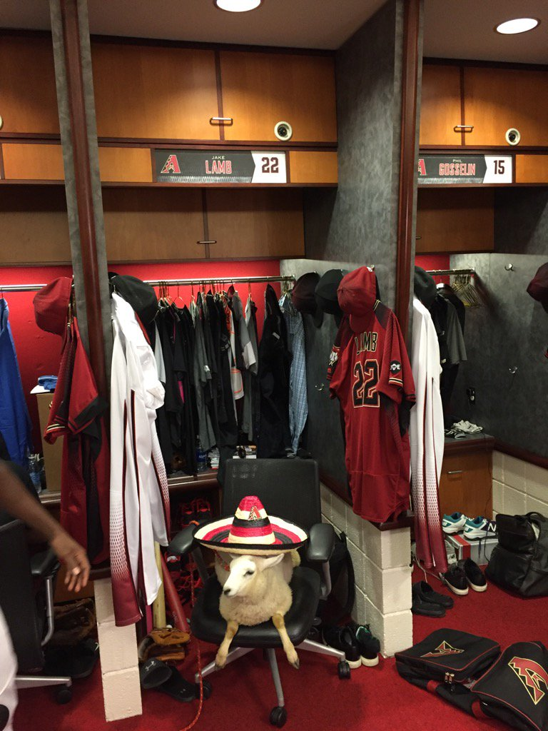 There's a lamb wearing a sombrero sitting in Jake Lamb's locker. #Dbacks https://t.co/MKkjDeSSkr