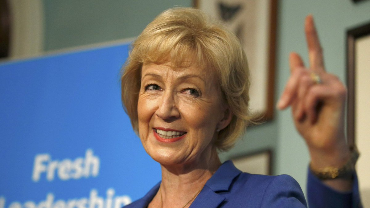 andrea leadsom  andrea leadsom revises her  u2018exaggerated u2019 cv after claims she em