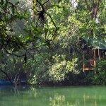 #CasiFinDeSemanaY El campamento Río Lacanjá en plena #SelvaLacandona te espera #Naturaleza #Chiapas https://t.co/FjZ9XcD7Ij