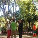 Visita al Parque María Cristina para supervisar los trabajos que se están llevan a cabo sobre arboleda #Seguimos https://t.co/AEOLs4Rf3I