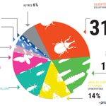 Voici les espèces dinsectes les plus consommées dans le monde. Les coléoptères ont la cote! https://t.co/ehkRCqsNn2 https://t.co/FkImv4XR1X