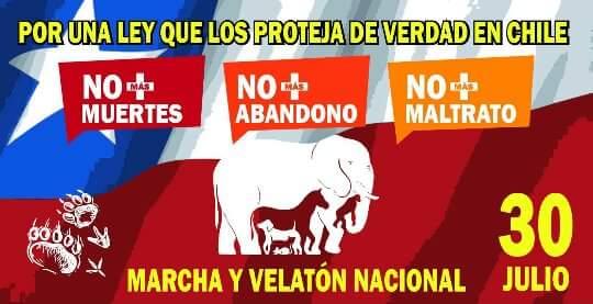 #OpWorldAnimal Todo #Chile le dice si al respeto y cuidado animal este próximo 30 de Julio en marcha nacional. https://t.co/7QFhNDQ3xN