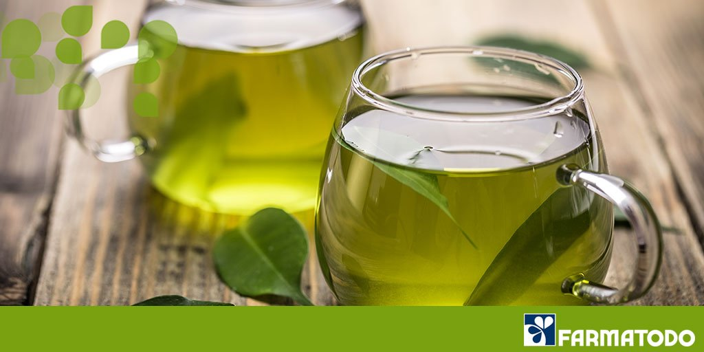 #SabíasQue el té verde retrasa el envejecimiento celular lo que ayuda a fortalecer tu memoria https://t.co/ghMibpUVhA